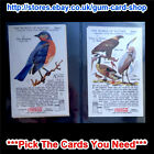 ☆ Coca Cola The World of Nature 1930s Series V to VIII (VG) *Please Choose Card*