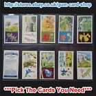☆ Priory Tea I-SPY Wild Flowers 1963 (G) *Pick The Cards You Need*