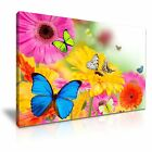 Colourf Butterfly Flower Canvas Wall Art Picture Print Decoration 5 Sizes Choose