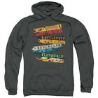 Harry Potter BURNT BANNERS Licensed Adult Sweatshirt Hoodie