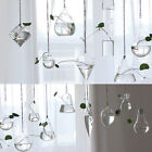 Clear Flower Hanging Vase Planter Terrarium Container Glass Home Wedding Decor