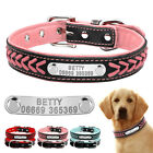Personalised Dog Collar Custom Soft Padded Pet Collars Name ID Tag Engraved Free