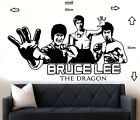 Bruce Lee Fight Star Karate Wall Art Sticker Mural Room Removable Decal