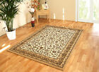 NEW LARGE - EXTRA XL LARGE BEIGE CREAM ELEGANT SOFT CLASSIC TRADITIONAL AREA RUG