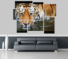 Beuatiful Tiger in River Removable Self Adhesive Wall Picture Poster 1196