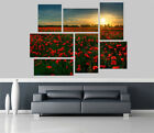 Red Flowers Garden Sunset Flowers Removable Self Adhesive Wall Picture 1241