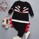 2PCS Toldder Kids Baby Boy Tops T-shirt+Pants Trousers Tracksuit Outfits Clothes