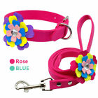 Luxury Flower Studded Cat Dog Collar and Leash for Dachshund Beagle Bichon Frise