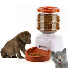 5.5L Voice Recording Pet Feeder for Cat Dog Automatic Pet Animal Feeder Popular