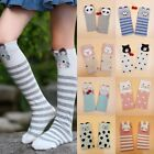 New Girls Cartoon Toddler Warm Long Socks Kids Child Knee High Stockings Cotton