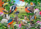 Glass Chopping Board Kitchen Worktop Saver Protector British Birds Country Scene