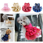 Внешний вид - Pretty Large L Female Red Princess Dog Dress Pomeranians Pugs Sale