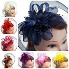Tulle Feather Net Fascinators Hats Wedding Headpiece Birdcage Veils Headwear US