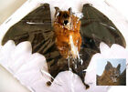 Hipposideros bicolor / larvatus Complete dried bat Taxidermy REAL
