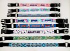 RAVEBANDZ CUSTOM PERSONALIZED QUICK RELEASE ID DOG COLLAR STAINLESS STEEL NEW