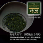 Nonpareil Award-winning Organic Gyokuro Jade Dew Finest Shaded Japan Green Tea