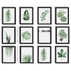 Green Plants Canvas Art Print Poster Leaf Painting Wall Pictures Size Home Decor