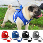 Dog Harness for Chihuahua Pug Pet Control Mesh Walk Collar Vest Harnes&Leash