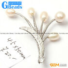 45x50mm Freshwater Pearl White Gold Plated Brooch Fashion Jewelry Free Shipping