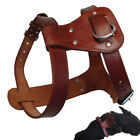 Brown Large Leather Dog Harness Small for Pitbulls No Pull Heavy Duty Pet Vest