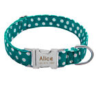 Custom Nylon Personalized Dog Collar Small Large Heavy Duty Buckle Engraved FREE