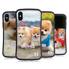OFFICIAL BOO-THE WORLD'S CUTEST DOG PLAYFUL HYBRID CASE FOR APPLE iPHONES PHONES