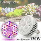 120W E27 LED Grow Light Full Spectrum Growing Lamp Bulb For Seeds Hydroponic Veg