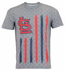 Forever Collectibles MLB Men's st. Louis Cardinals Big Logo Flag Tee on Ebay