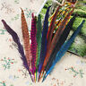 More images of Premium DIY 10PCS Colourful Pheasant Tail Feathers 25-30cm / 10-12 For Party