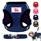 Small Dog Harness and Leash Set Pet Puppy Cat Mesh Vest Yorkie Pug Pink Red Blue