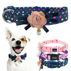 Fancy Flower Dog Collars Pet Cat Show Necklace for Small Medium Large Girl Dogs
