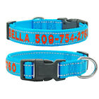 Embroidered Personalized Nylon Dog Collar Reflective Custom ID Name Puppy Collar