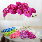 Artificial Butterfly Orchid Silk Flower Bouquet Phalaenopsis Home Decor Wedding
