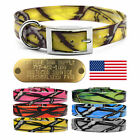 """Hunting Dog Pattern Name Collar 1"""" Strap D Ring & 1"""" LG Brass Tag Name ID Plate"""