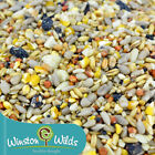 No Waste Wild Bird Seed Mix. No Wheat, No Husk, less Mess. + Fruit.