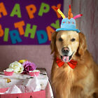 Dog Birthday Cake Hat with Cake & Candles Pet Puppy Cat Party Costume Cap Pink