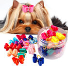20/100pcs Dog Hair Bows&Rubber Bands Grooming Accessory Topknot Shih Tzu Yorkie