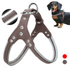 Reflective Step In Leather Dog Harness Adjustable Grey Red Jack Russell Beagle