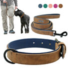 S-2XL Leather Padded Pet Dog Collar&Leash Set Small Medium Large Brown Pink Blue