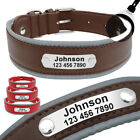 Reflective Custom Soft Leather Pet Dog Collars w/ Nameplate Small Medium Large