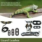 Leather Reptiles Pet Leashes Collar Dinosaur for Lizard Crocodile Squirrel Cat