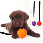 WO_ CW_ GT- Cute Rubber Ball Strap Rope Dog Cleaning Teeth Pet Chewing Bite Trai