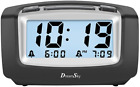 DreamSky Dual Alarm Clock with Smart Adjustable Nightlight, Snooze, Large LCD Di
