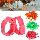 100pcs Chicken Foot Ring Hen Leg Clip Poultry Band Duck Bird Rings Parrot Pigeon