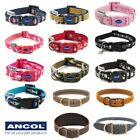 ANCOL™ NYLON & LEATHER DOG COLLARS Small-Large Adjustable Patterned Walking Lead