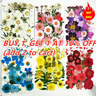 Assroetd Real Dried Flowers Pressed Leaves for Epoxy Resin Jewelry Making DIY
