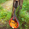 More images of 8String Mandolin Wood  Instrument Sunburst A Style Acoustic Electric Guitar