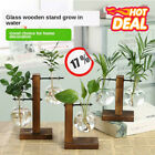 Plant Glass Vases Hydroponic Flower Pots Wooden Frame Stand Terrarium Home Decor