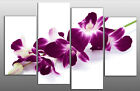 LARGE PLUM PURPLE ORCHIDS ON WHITE CANVAS PICTURE WALL ART MULTI SPLIT PANEL 40