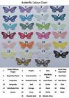 20 BUTTERFLY CARD MAKING TOPPERS  various colours
